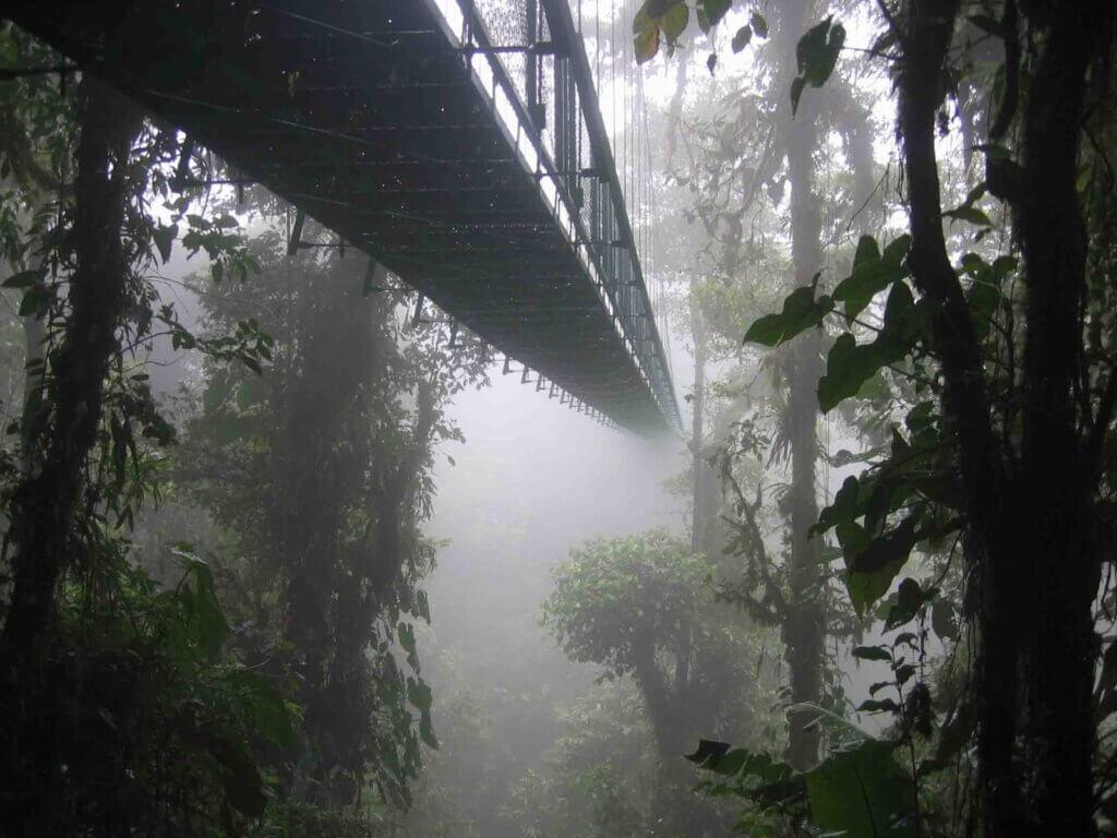 Cloud Forest, Santa Elena, Costa Rica